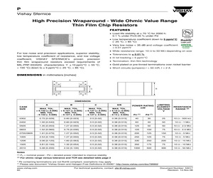 P1005K1010BN.pdf